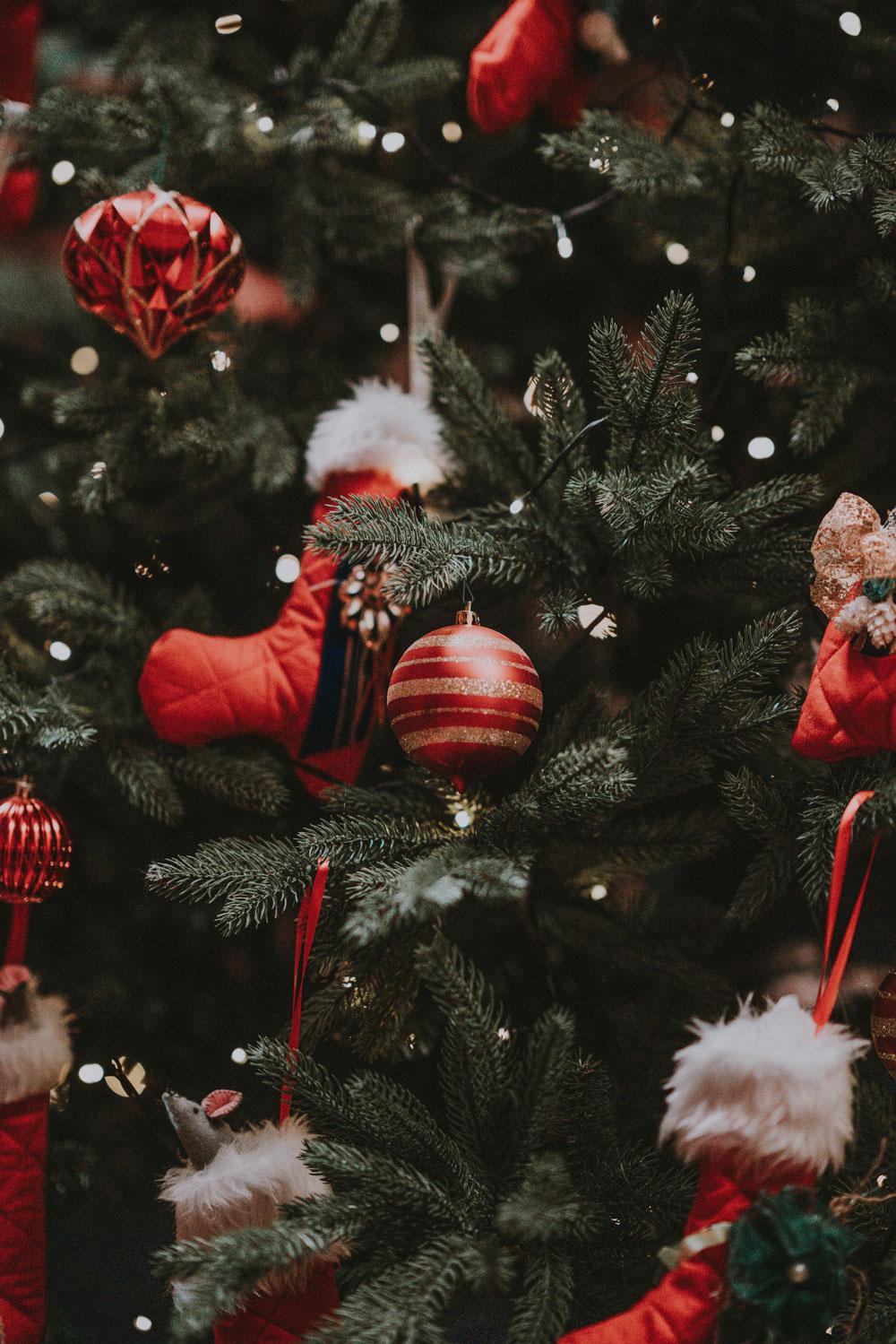 menu de navidad
